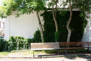 BiLa Dok 6 Arlesheim Pocketparks Boden Aufnahmen