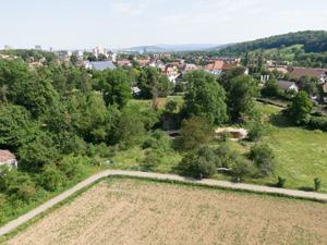 BiLa-Dok-Mün-Obst-Hofmatt-L-2-DJI 0049